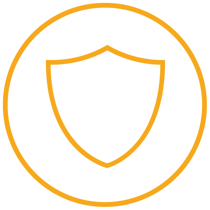 security logo depicted as a shield